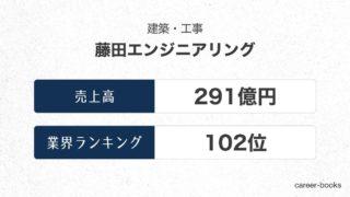 藤田エンジニアリングの売上高・業績