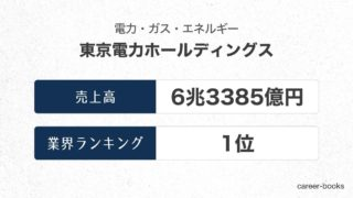 東京電力ホールディングスの売上高・業績
